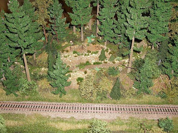 Лесной модуль Торстена Шульца