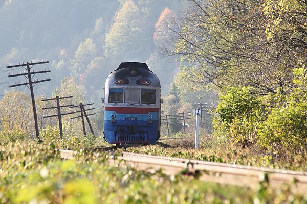 Дизель-поезд Д1 799-1/628-1