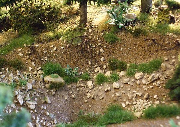 Какие растения сажают на склонах 73